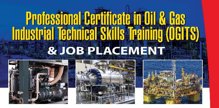 Professional Certificate in Oil & Gas Industrial Technical Skills
